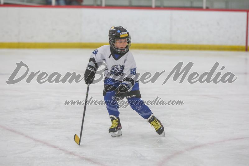 Blizzard Hockey 111719 7253.jpg