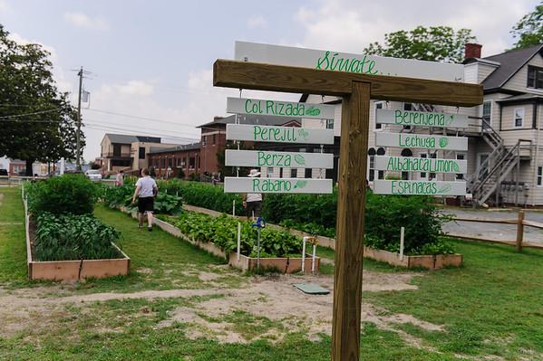 Community  Garden on Camden Ave
