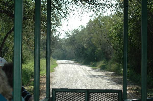 Journal Site 57: Bentsen - Rio Grande Valley State Park & World Birding Center