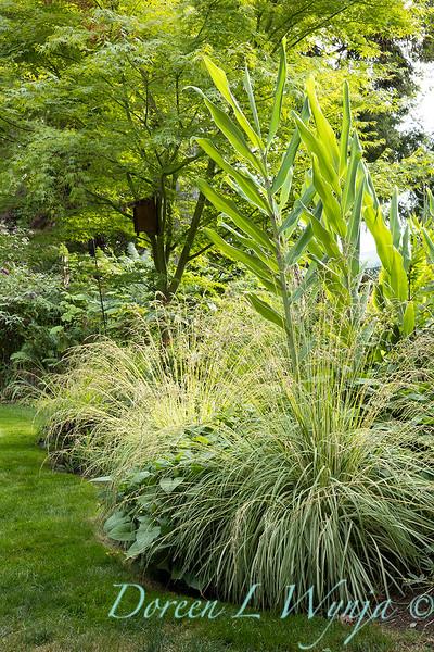Whit & Mary Carhart garden_6204.jpg