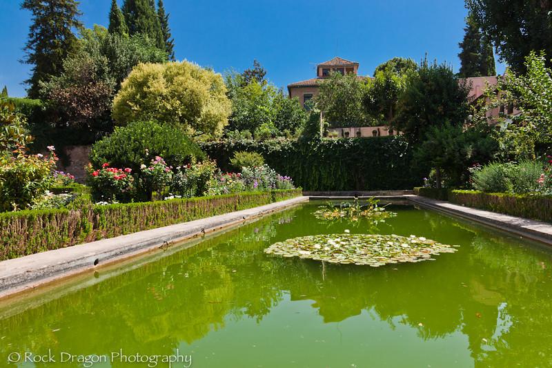 alhambra-120.jpg