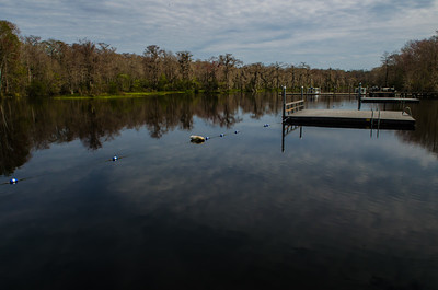 02-15-2019 Wakulla Springs and St Marks NWR