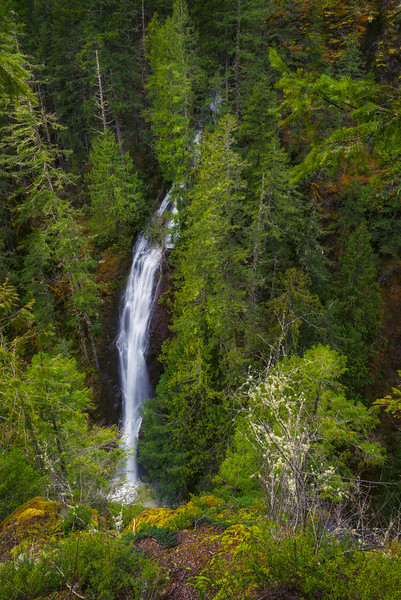 Waterfalls along Hwy 101 of Hood Canal.