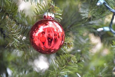 Christmas Card Students & Ornament/Tree Photos