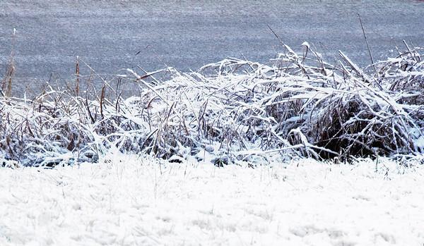 060118 - Snow in Nashville