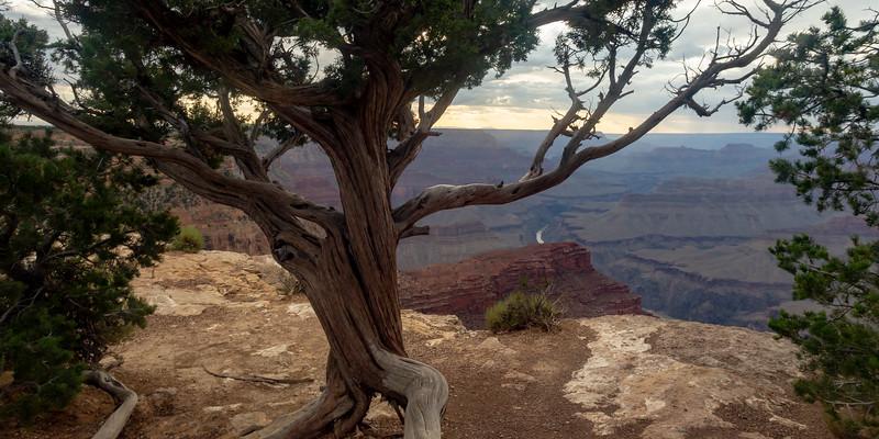 Grand Canyon-5015.jpg