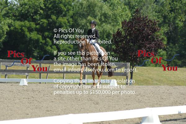 VADA/NOVA Summer Dressage & USEF Young Horse Trial - June 2012