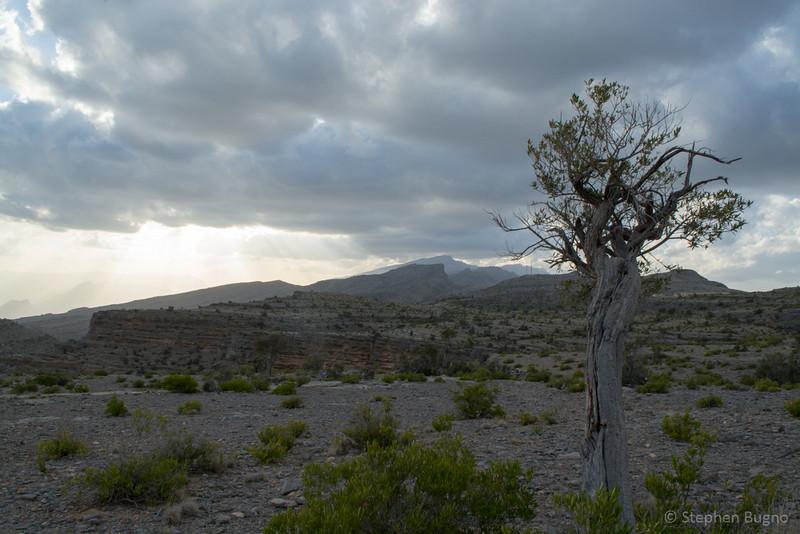 Jebel Akhdar-0666.jpg