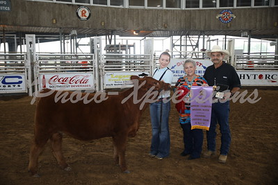 Heifer Show Tuesday 9-25