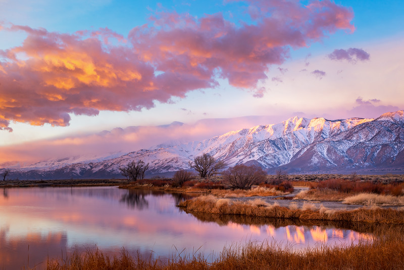 Winter Sunrise at Buckley Ponds in the Owens Valley