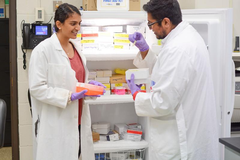 CHIRP 2019 labs045.JPG