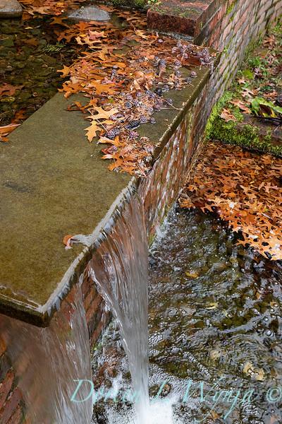 Dietrick fall garden_2040.jpg