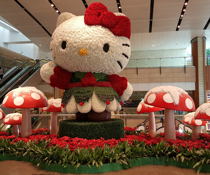 Hello Kitty!  Red flowers and mushrooms on Saturday 6 JAN.