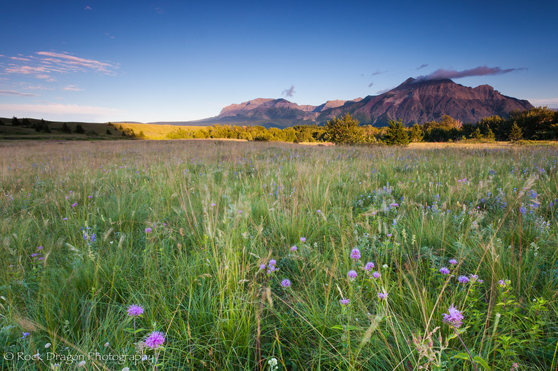 waterton-5.jpg