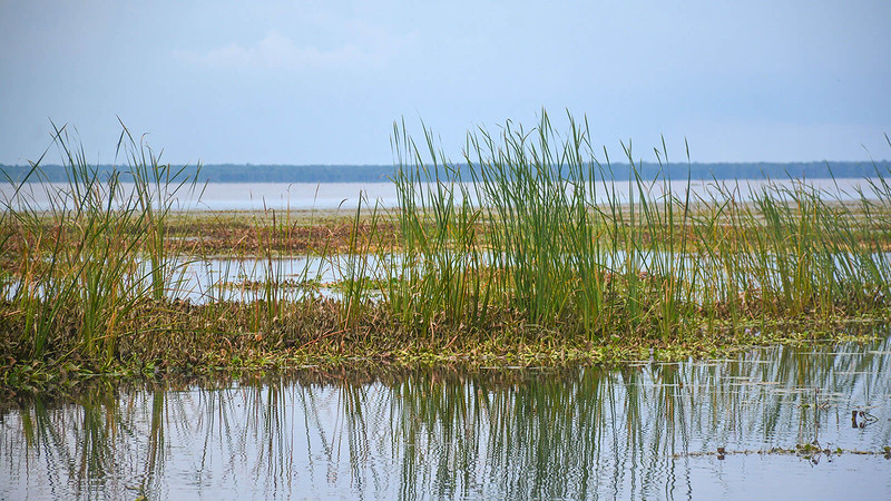 Lake George panorama