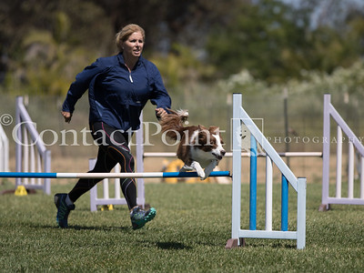 Contact Point AKC June 2017