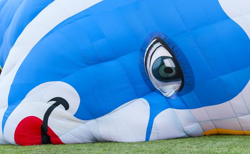 Hot Air Balloon Rio 2016.jpg