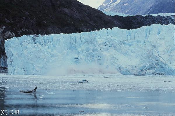 Glacier Bay National Park September 2017