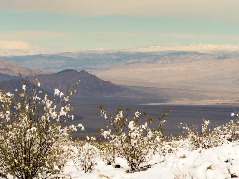 Death Valley-201.jpg