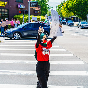 Protests for Palestine