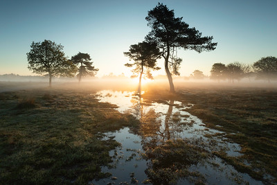 Project National park Utrechtse Heuvelrug