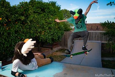 Fuse and Felix Skateboarding