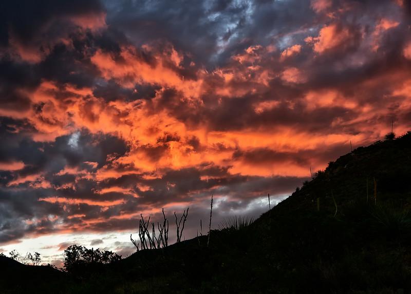 NEA_1156-7x5-Sunrise.jpg