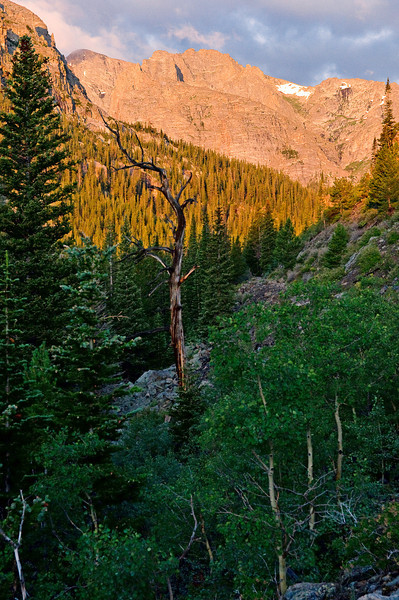 On the trail to Mills Lake, Rocky Mountain National Park, Colorado. The sun is rising, cutting through the gorge. Lesson learned: bring a tripod and an ND grad filter. Bringing out shadows in pp is a pain in the neck. But it's pretty nonetheless.