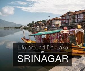Life and sights around Dal lake in Srinagar, Kashmir, India