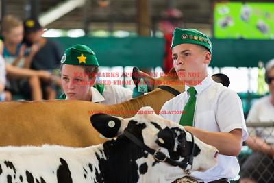 2017 Chino Fair - Dairy