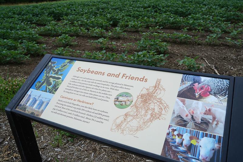 Arboretum, July Harvest-106.JPG