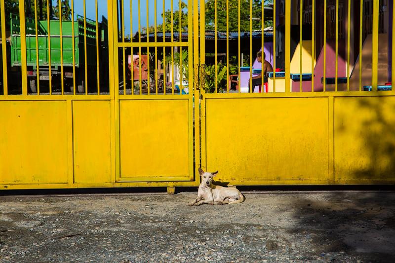 Timor Leste-155.jpg