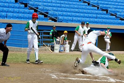 """Springfield Metro Baseball - 2014"""