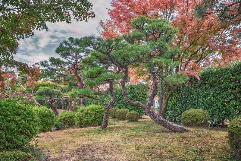 KyotoBijitsukan2 copy.jpg