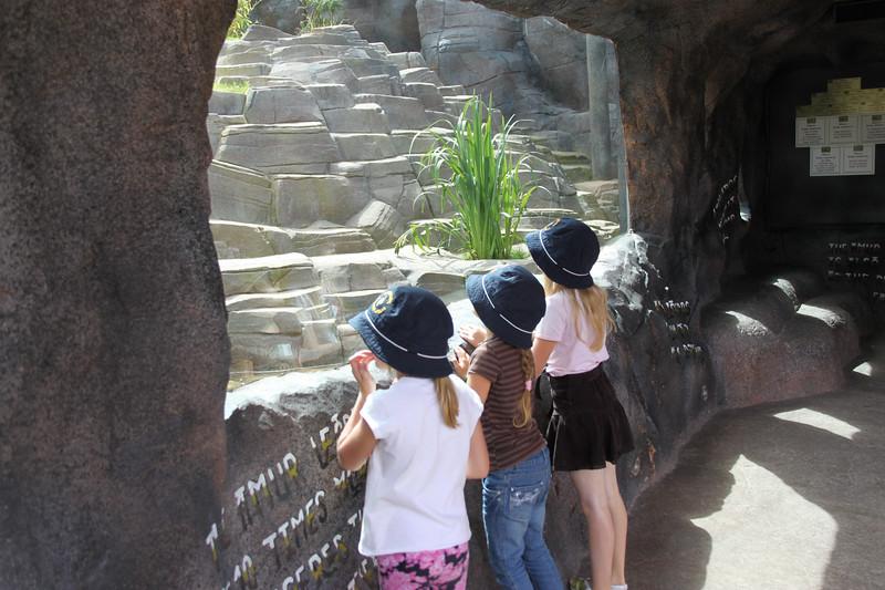 colchester zoo (25).jpg