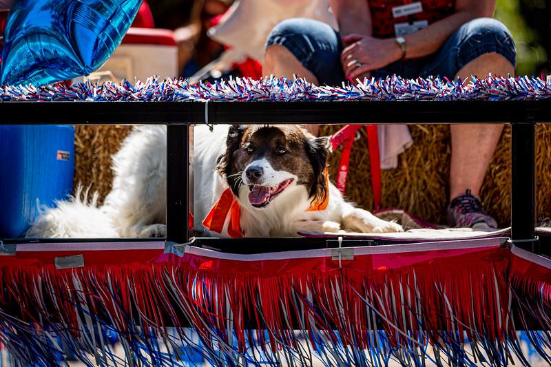 Mike Maney_Doylestown Memorial Day Parade 2019-94.jpg
