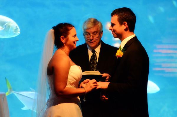 Hinton-Vartanesian Wedding