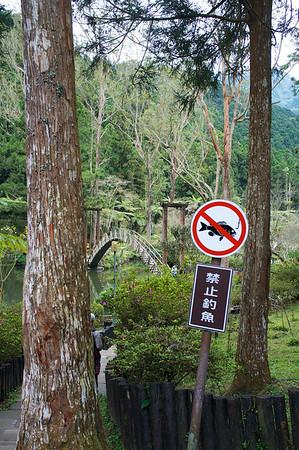 Taiwan 2013 - Signs