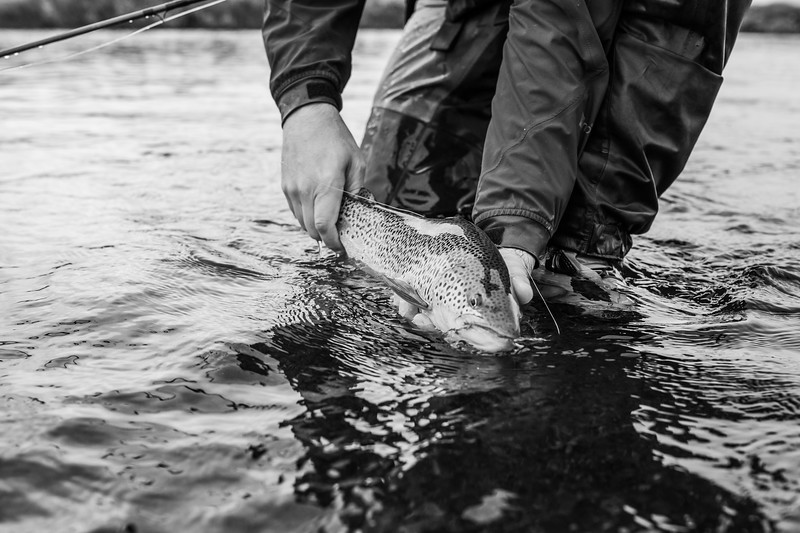 holknaicelandatlanticsalmonflyfishing.bencarmichael (25 of 343).jpg