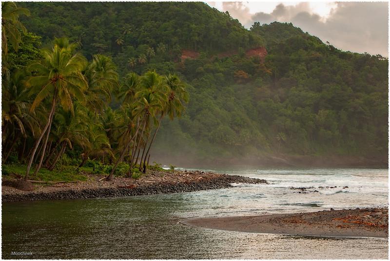 Dominicashore1.jpg