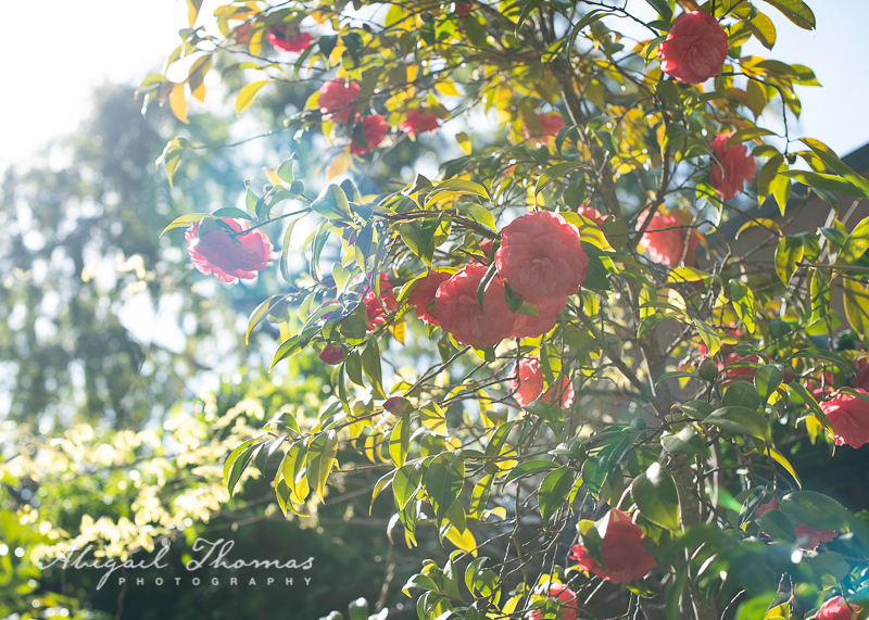 SpringBreak_2019-3614.jpg