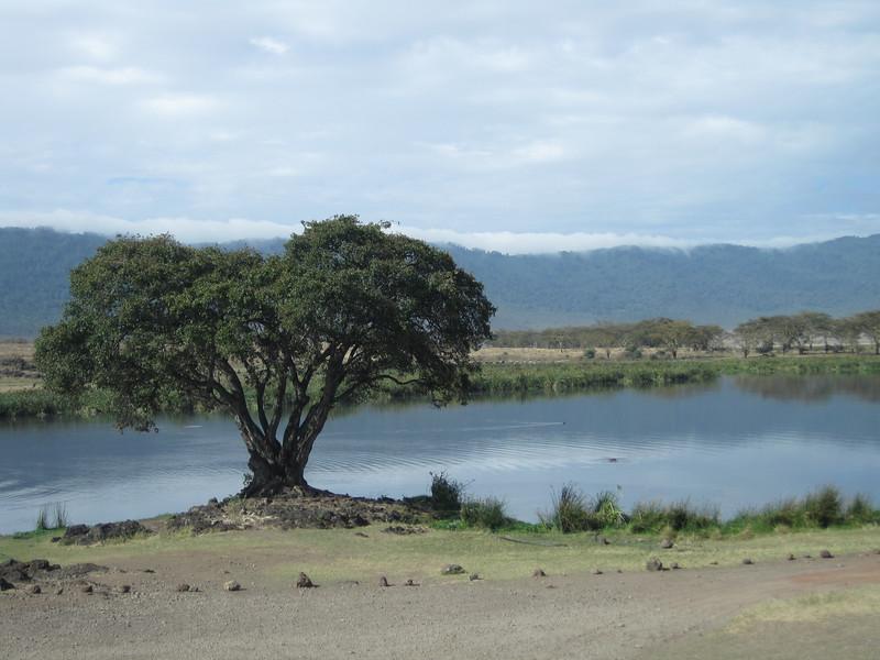 Tanzania14-3405.jpg