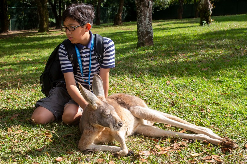 Australia_282.jpg