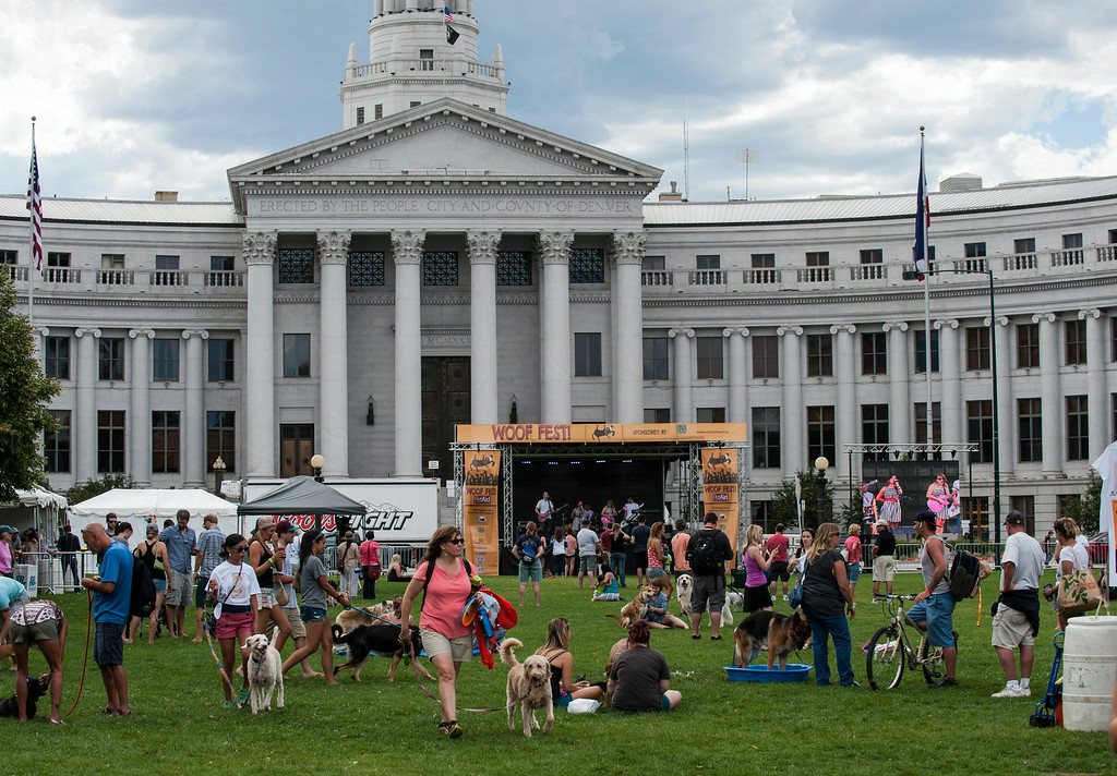 . Festival attendees spread across the grass at Woof Fest! in downtown Denver, Colorado, Sunday, August 17, 2014. The free festival included two music stages, food trucks, and space for pets and their owners to play. ((Photo By Brenden Neville/Special to The Denver Post))