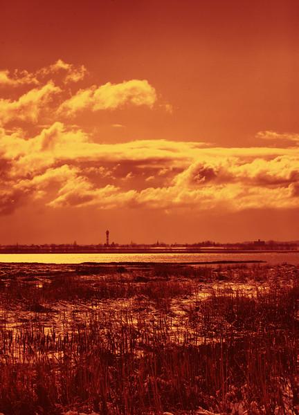 20100306-_MG_4183-ed-m-Andreas-2990925313-O.jpg