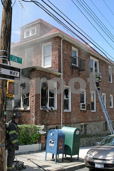Bronx- Carpenter@E236