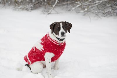 AJ in the Snow FULL