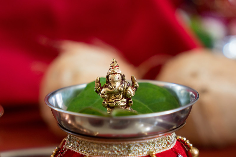 Hina_Pithi_Pooja-207.jpg