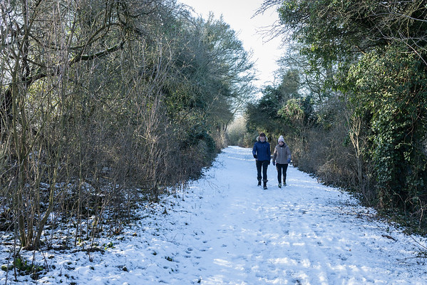 Snowy Walk - Feb 2019