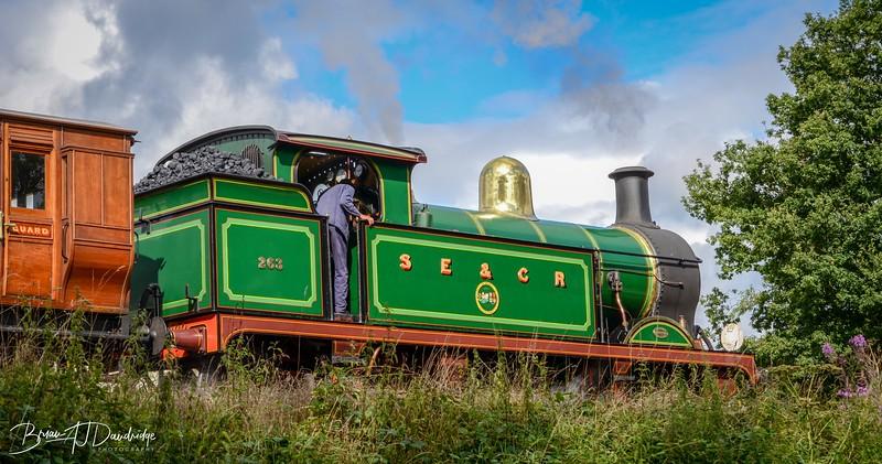 130811_Bluebell_Railway_0003.jpg